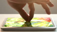 tablet pc and humming-bird video