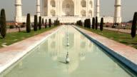 Taj mahal (Tilt up), A monument of love video