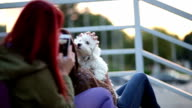 Taking Pictures of Cute Puppy video