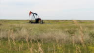 Tall Prairie Grass With Oil Pump In The Background video