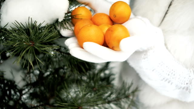 Tangerines in palms against background of winter landscape video