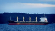 Tanker In The Bay At Sunset video