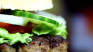 Tasty Burger, close up video
