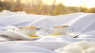 Tea cups outdoors at picnic during autumn with bokeh and sunshine in slowmotion. 1920x1080 video