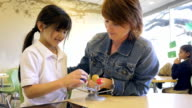 Teacher using educational solar system toy to explain science class assignment to Asian elementary school student video