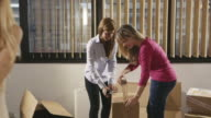 team of business women moving office packing boxes video