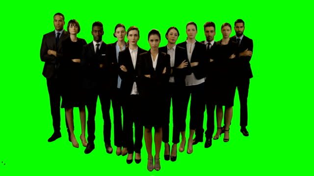 Team of businesspeople standing with arms crossed video