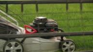 Technique for the lawn video