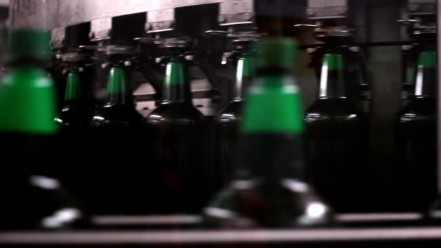Technological line for bottling of beer in brewery. video