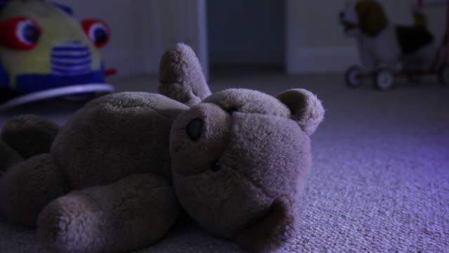 Teddy at night. video