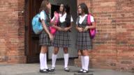 Teen Female Students Socializing video