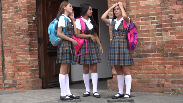 Teen Female Students Standing And Talking video