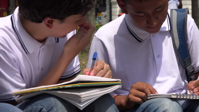 Teen Male Students Studying video