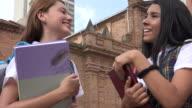 Teen Students Talking Holding Textbooks video