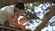 Teenage Boy Helping Younger Brother To Build Treehouse video