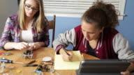 Teenage Girls Work on a Robotics Project video