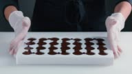 Tempered chocolate in Mold. Slow motion. Confectionery video