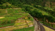 Terraced fields in Madeira, Portugal aerial view video