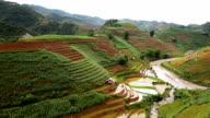 terraced rice field in Mu Chang Chai, Vietnam video