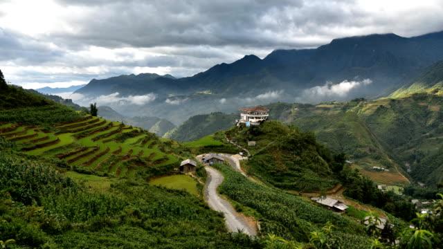 terraced rice field in Sapa, Vietnam video