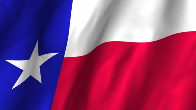 Texas State Flag - waving, looping video