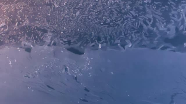 Texture of frozen lake video