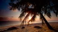 Thai Beach video