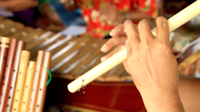 Thai Flute and xylophone. video