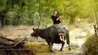 Thai girl sit on buffelo video