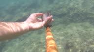 Thai moken hunting underwater video
