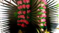 Thai Traditional Wedding Accessories video