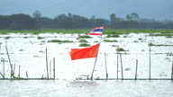 Thailand flag on the lake,Slow motion video