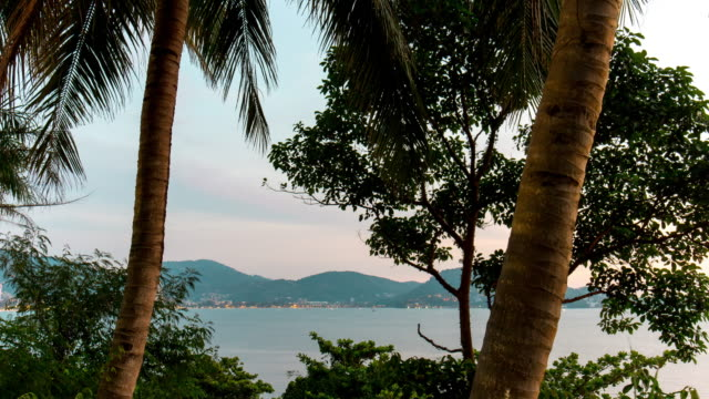 thailand phuket island twilight sunset palm tree patong beach panorama 4k time lapse video