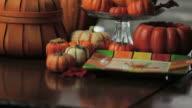 Thanksgiving Pumpkins video