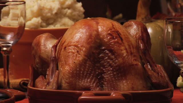 Thanksgiving Turkey video