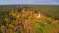 The aerial view of the forest in Nommeveski in Estonia video