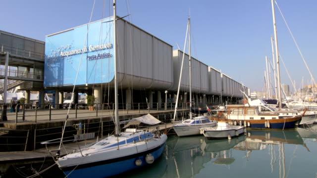 the aquarium of genoa, italy video