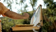 The artist draws from nature on the park. Easel and canvas video
