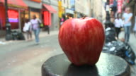 HD TIME-LAPSE: The Big Apple-Metaphor of New York video