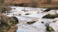The Black Water of Dee, Dumfries and Galloway, Scotland video