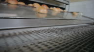 The bread on the conveyor oven. Bread bakery video