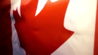 The Canadian flag flies and falls down. Slow motion video