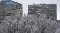 The city snow fell video