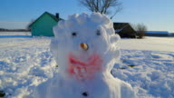 The closer look of the face of the snowman video
