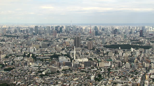 The day view of Tokyo video