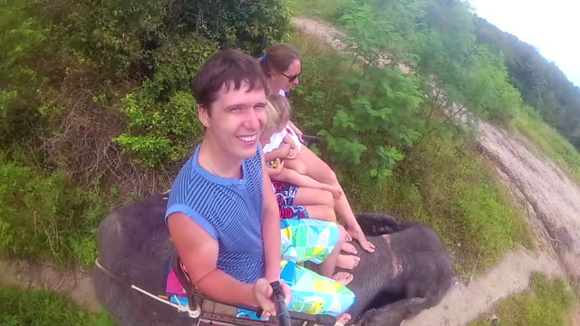 PHANGAN, THAILAND .The family riding on elephants in the tropical forest video