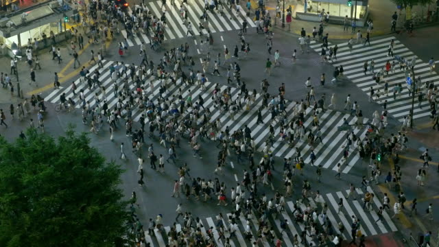 The famous Shibuya Crossing in Tokyo Japan video