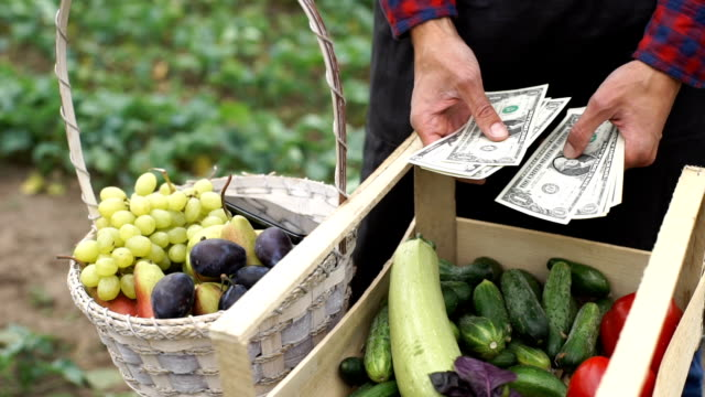 The farmer considers the earned money video