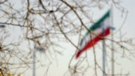The flag of Iran waving in the wind video