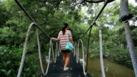 The forest mangrove in Thailand. video